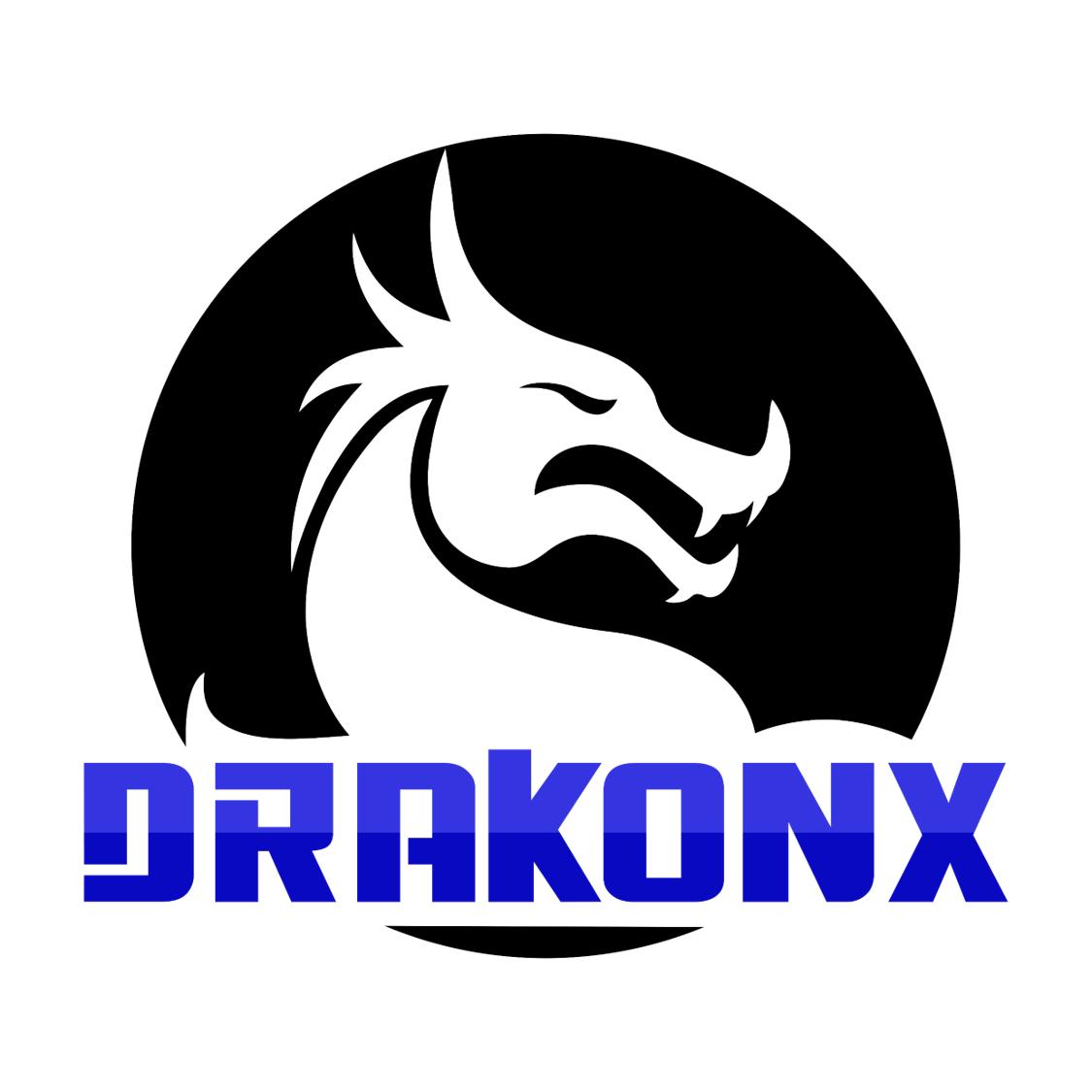 Drakonx Private Investigator Detective